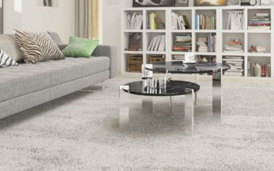 Preparing for Our Arrival – Carpet or Tile Cleaning